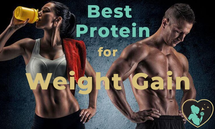 this picture is our featured image of our new article on protein powder and muscle mass weight gain