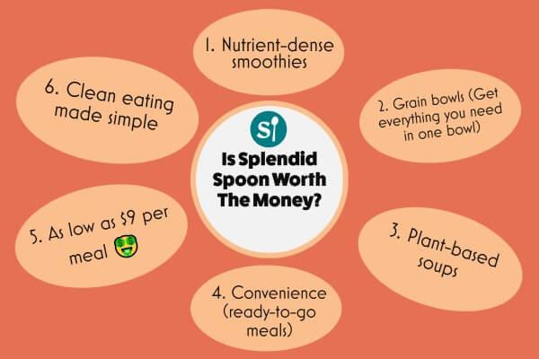 infographic showing splendid spoon worth the money