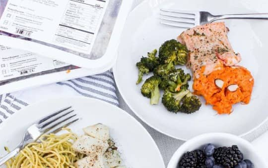 diet plan options - mighty macros