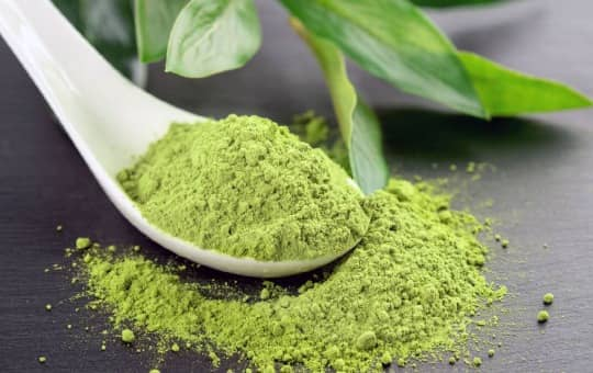 matcha powder on the table with spoon